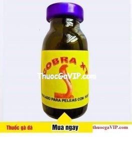 cobra XT