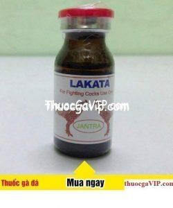 lakata